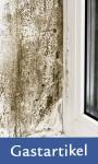 Achtung, Mehrfamilienhausbesitzer: Wichtige Präzidenzfälle zum Thema Mietminderung