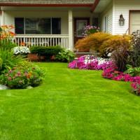 Nutzungsrecht Garten Mehrfamilienhaus : nutzung garten mehrfamilienhaus energie und baumaschinen ~ Lizthompson.info Haus und Dekorationen