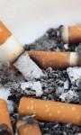 Wie viel Zigarettenrauch ist (er-)tragbar?