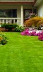 Streitfall Garten: Nutzung muss geregelt werden